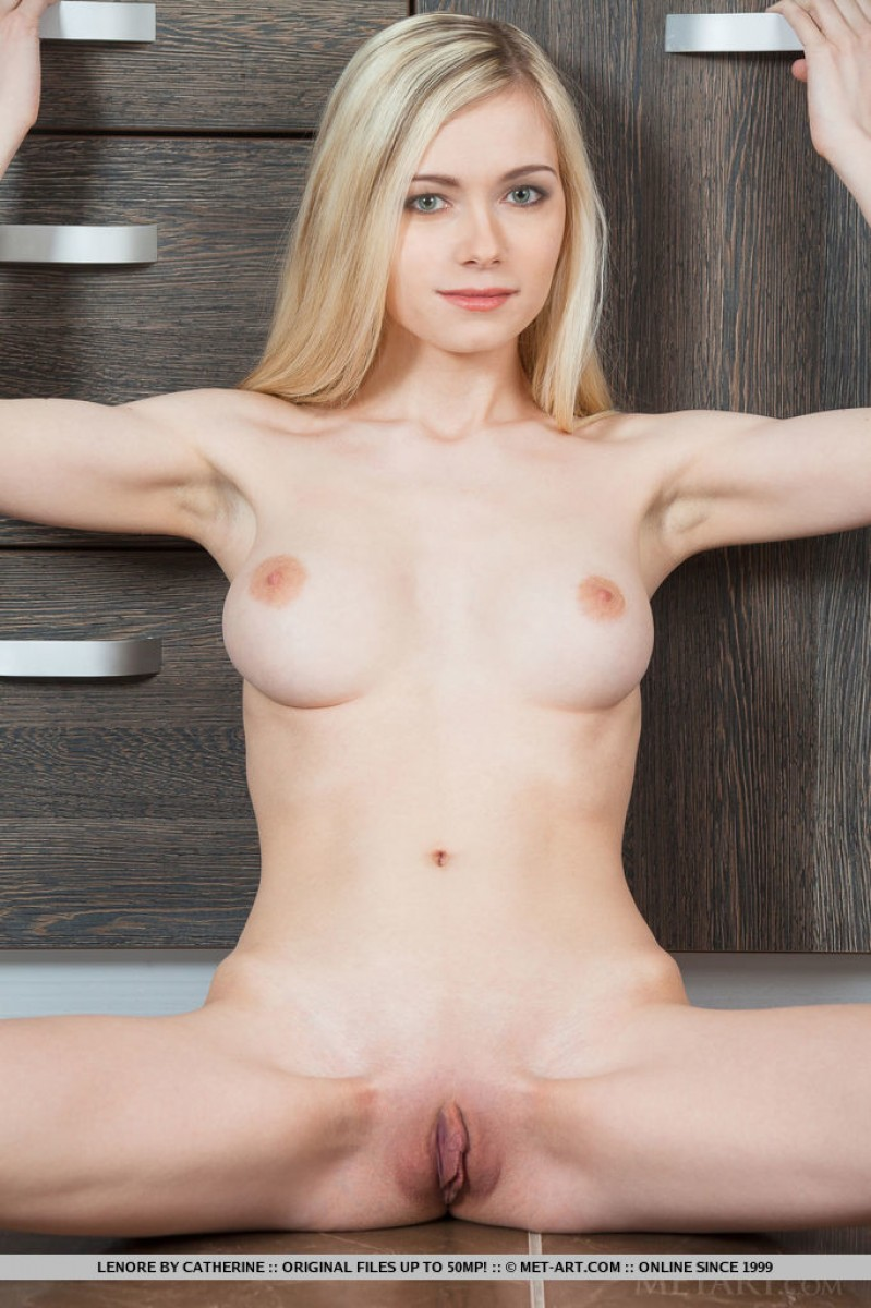 Met art nude blonde coeds for the