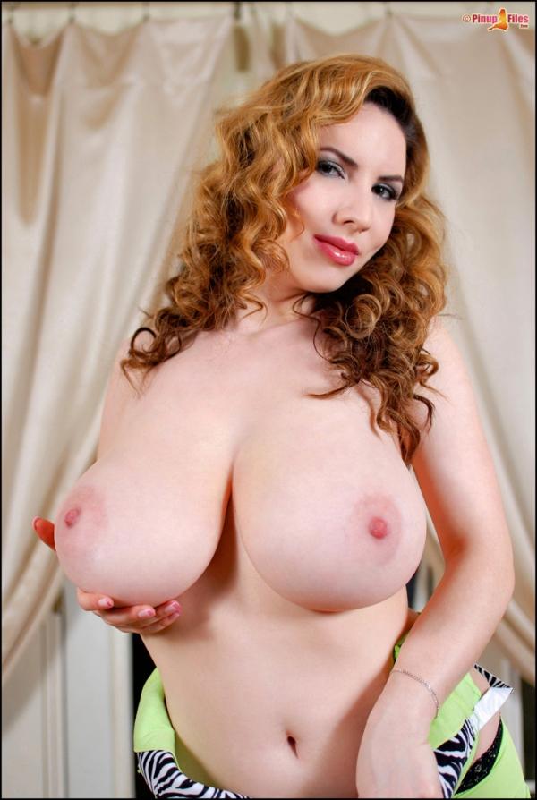 Big natural tits pinup