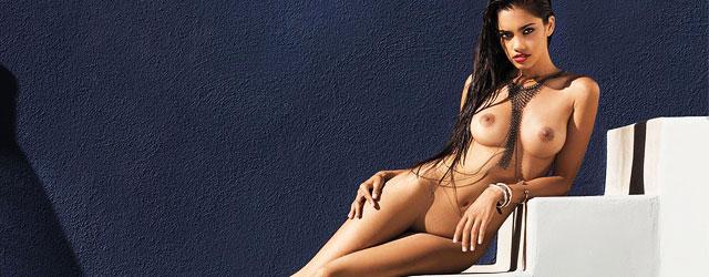 Hot Wet Exotic Model