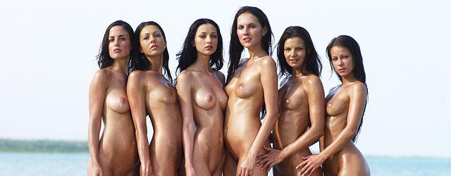 wwe renea young nude pics