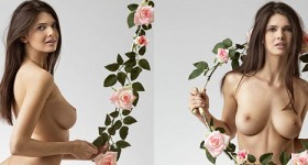 jasmine-with-flowers
